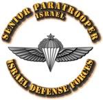 Israel - Senior Paratrooper Wings