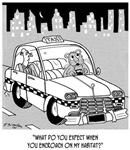 Habitat Cartoon 4911