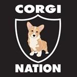 Corgi Nation