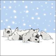 Keesie Snow Dogs