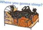 2Blks Where You Gonna Sleep