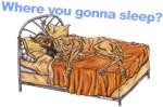 CBr Where you gonna sleep