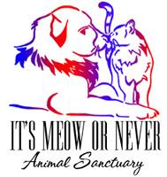 Logo Merchandise