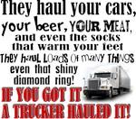 A Trucker Hauled It