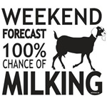 Nubian Dairy Goat Weekend Forecast