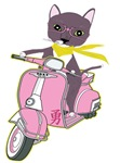 The Pink Vespa