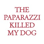 Paparazzi Killed My Dog