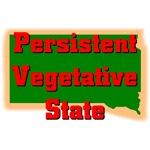 South Dakota - Persistent Vegetative State
