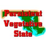 Maryland - Persistent Vegetative State