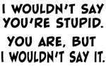 You're Stupid