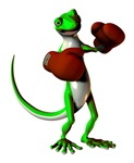 Gecko Boxer