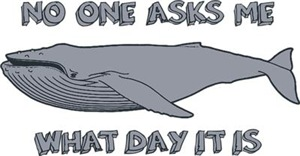Sad Hump Day Humpback