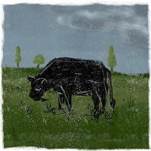 Grim Cow