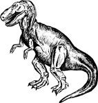 T-Rex Line Drawing