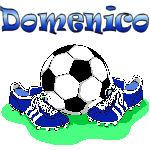 Domenico Soccer (Blue)