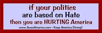 Hateful Politics Bumper Sticker