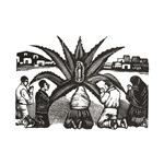 Milagro - Guadalupe - Posada