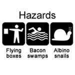 Geocaching hazards