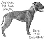 American Pit Bull Terrier...There is No Substitut