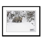 Framed Wildlife and Nature Prints