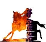 Cowboy/Cowgirl Humor
