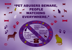 PETS/PET ABUSERS MUST GO TO JAIL