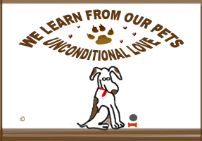 PETS/UNCONDITIONAL LOVE