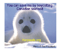 You can save the seals