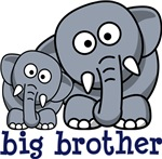 Big brother elephants