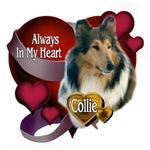 Valentine's Day Collie