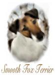 Smooth Fox Terrier Watercolor