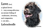 Love Is Labradoodle 2