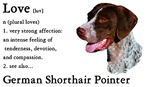 German Shorthaired Pointer Love Is