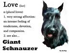 Love Is..Giant Schnauzer