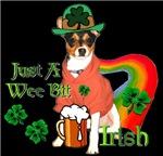 Rat Terrier St Patricks