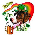 Today I'm Irish Pointer
