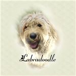 Labradoodle Gifts Of Art