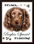 Boykin Spaniel Art Gifts