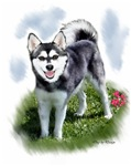 Alaskan Klee Kai Art Gifts