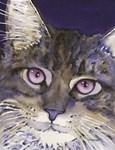 Whimsical Cat Portraits