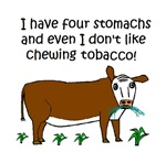FOUR STOMACHS NO TOBACCO CHEWED