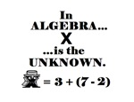 IN ALGEBRA X IS THE UNKNOWN