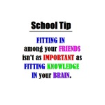 SCHOOL TIP - FITTING IN