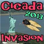 Cicada Liberty NY