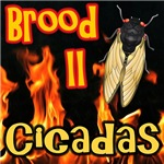 Cicadas On Fire
