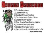 Cicada Warnings
