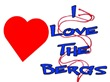 I Love The Bergs
