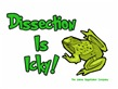 Dissection Is Icky: Frog