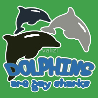 Dolphins apparel