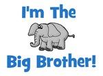 I'm The Big Brother (elephant)